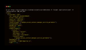 screenshot of checkov