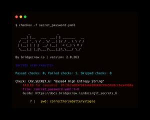 screenshot of checkov showing kubernetes